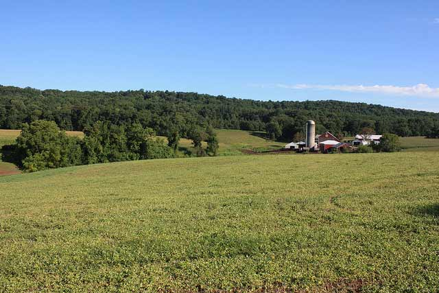 Nebraska ag land values decline 2 percent