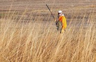 More than 500 special hunts available by draw in Kansas