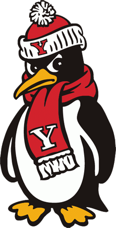 Katrina Gerbrand of North Newton, KS, named to Spring 2015 Dean's List at Youngstown State University