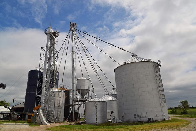 Grain crushings and co-products production