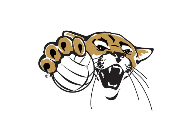Cougar Volleyball rally falls short at Butler