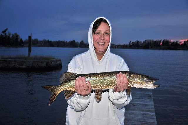 Northern Pike fishing in Kansas