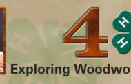 Sedgwick resident named Champion in 4H Woodworking