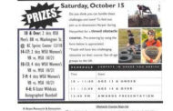 Harper: Wildcat Fitness Challenge to take place during HarperFest October 15