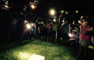 Hesston's Dyck Arboretum presents: Spiders eight-legged Gems on the Prairie on October 29