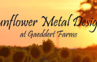 Buhler: Sunflower Metal Designs opens store front on November 3