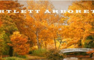 Belle Plaine: Bartlett Arboretum TreeFest Celebrates the Benefits of Trees on Nov 6