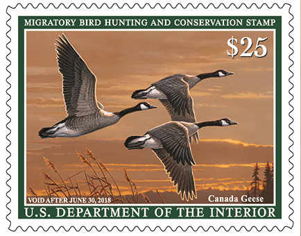 2017-2018 federal duck stamps on sale