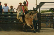 For The Love Of Horses: Teenage Cowboy Determined For Career As Champion Bull Rider