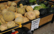 Growing fresh fruits and vegetables to sell? Workshops planned in Kansas and Missouri