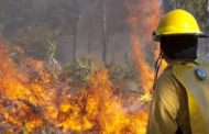 Wildfire risk reduction tips offered