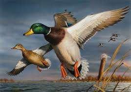 Delta Waterfowl Banquet