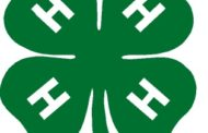 Morris County 4-H Foundation Plans