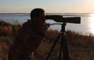 Kansas Birding Festival Comes To Milford Lake