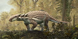 In near-complete fossil form, only known Kansas dinosaur reappears after 100 million years