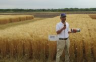 Wheat Scoop: Kansas Wheat Day, May 22