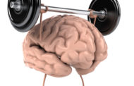 5 Ways A Healthy Gut Makes A Healthy Brain