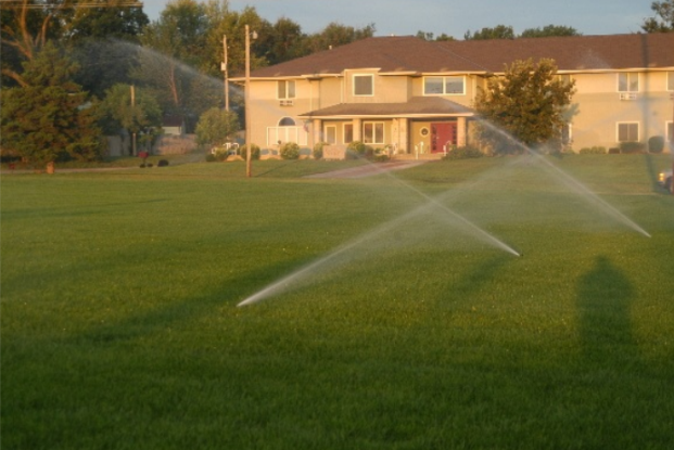 How Much to Water A Lawn