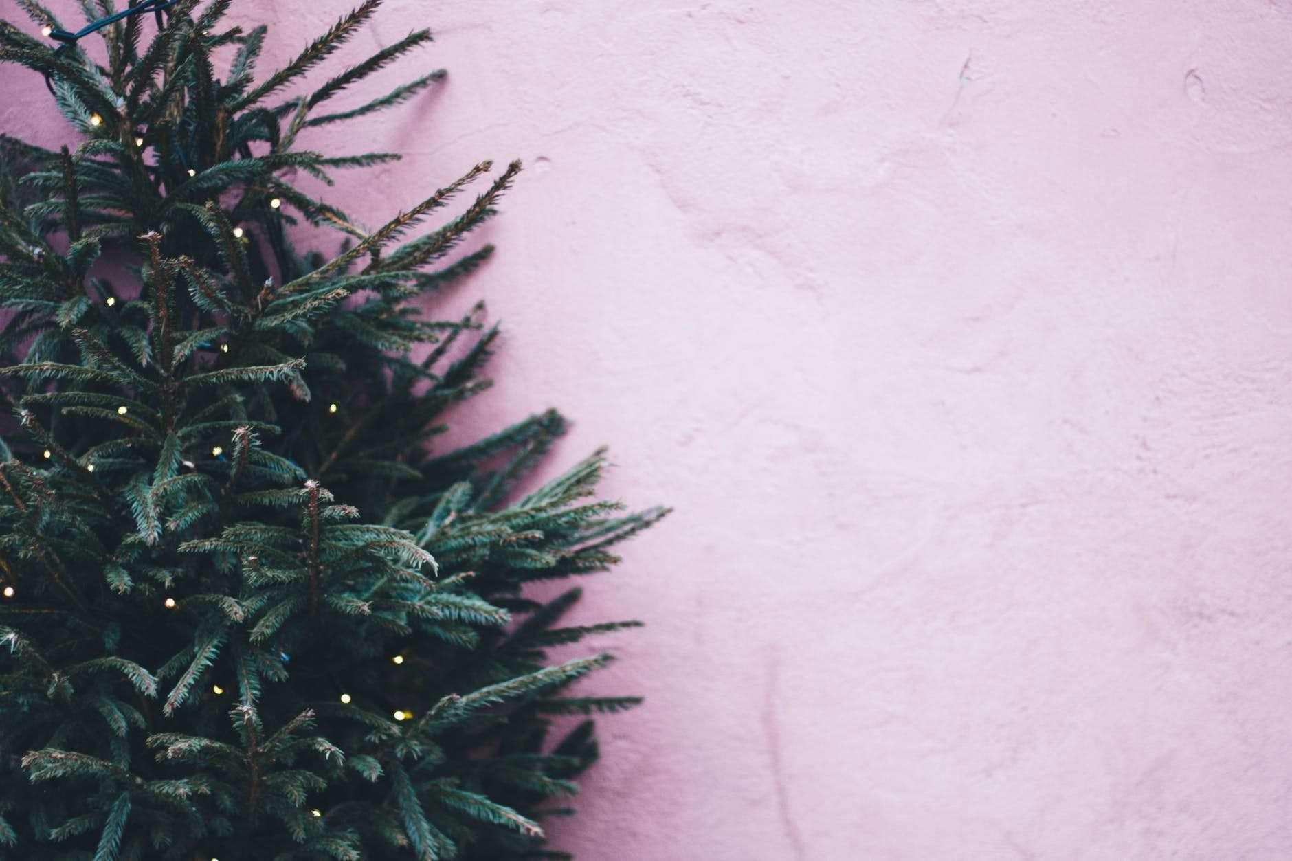 Pondering the Christmas Tree