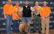 Oklahoma Outdoor News: Cy Curtis State-Record Elk Emerges from March Rack Madness!