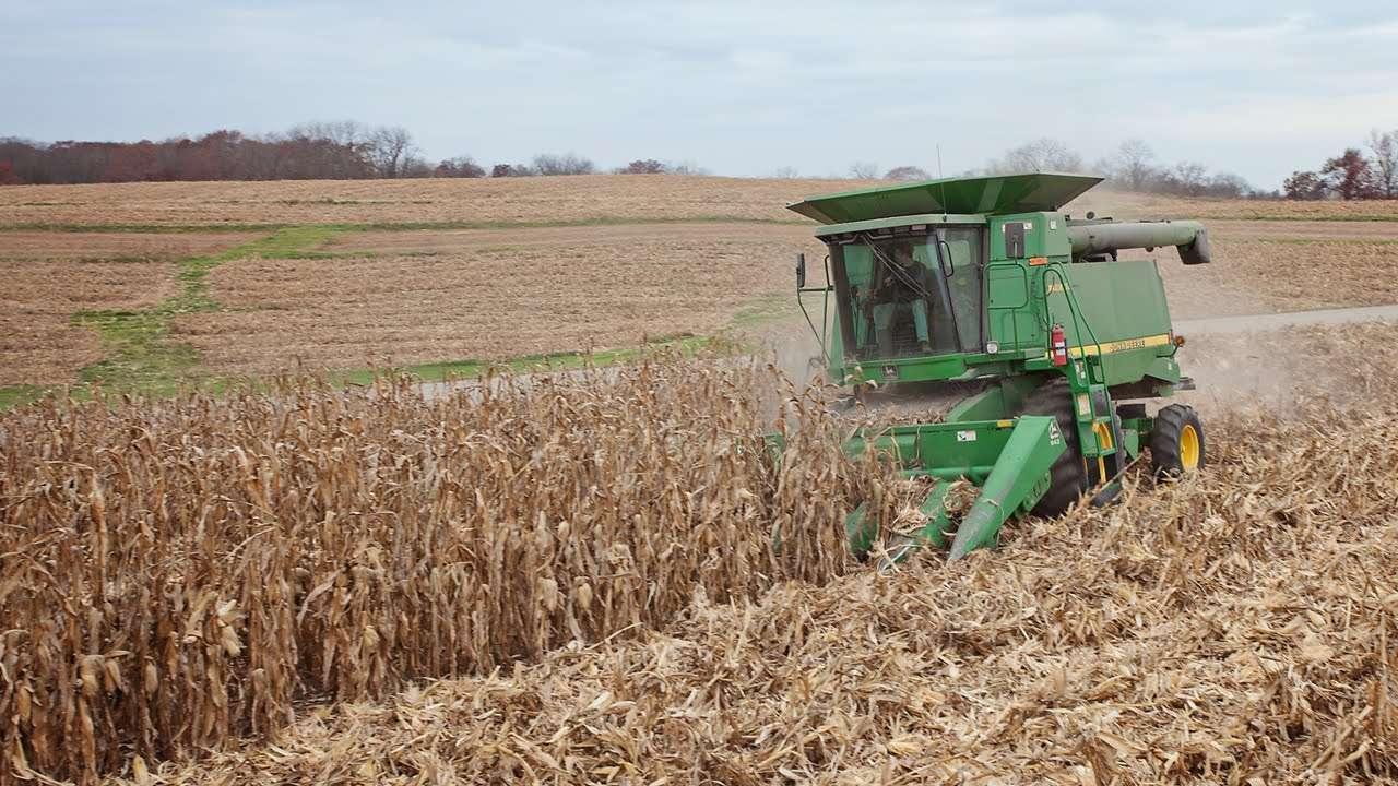2019 Kansas Corn Net Returns at $4.00 /bu RMA Projected Prices
