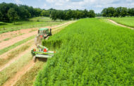 Governor signs bill establishing the Commercial Industrial Hemp Program