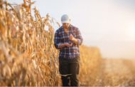 TRADE WAR EXPANDS GOVERNMENT ROLE IN AGRICULTURE, DESPITE DECADES OF FREE-MARKET REFORMS