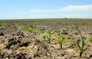 'American Soil' Is Increasingly Becoming Foreign-Owned