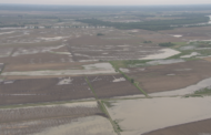 Soggy Fields Across The Midwest Slow To Be Seeded, And Time's Running Out