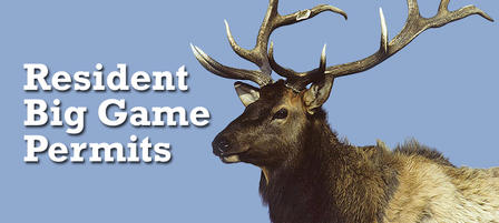 Deadline Approaching for Resident Big Game Permit Applications