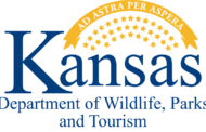 KDWPT Receives National Award for Lesser Prairie-Chicken Project